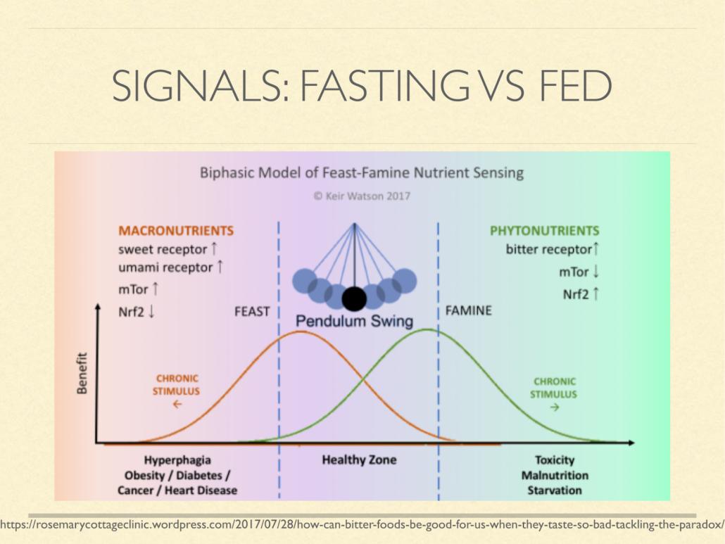 feast famine nutrient