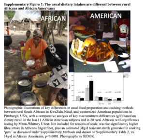 african-vs-american-2Bdiets-300x289.png